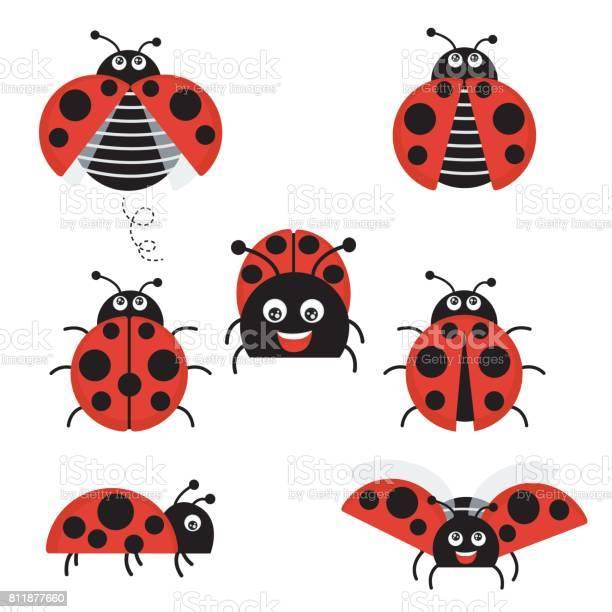 Cartoon ladybug vector set isolated from the background cute ladybug vector id811877660?b=1&k=6&m=811877660&s=612x612&h=pxbj3ewkt6zfp6pbzzzednai40e wspyhnix7oaj ks=