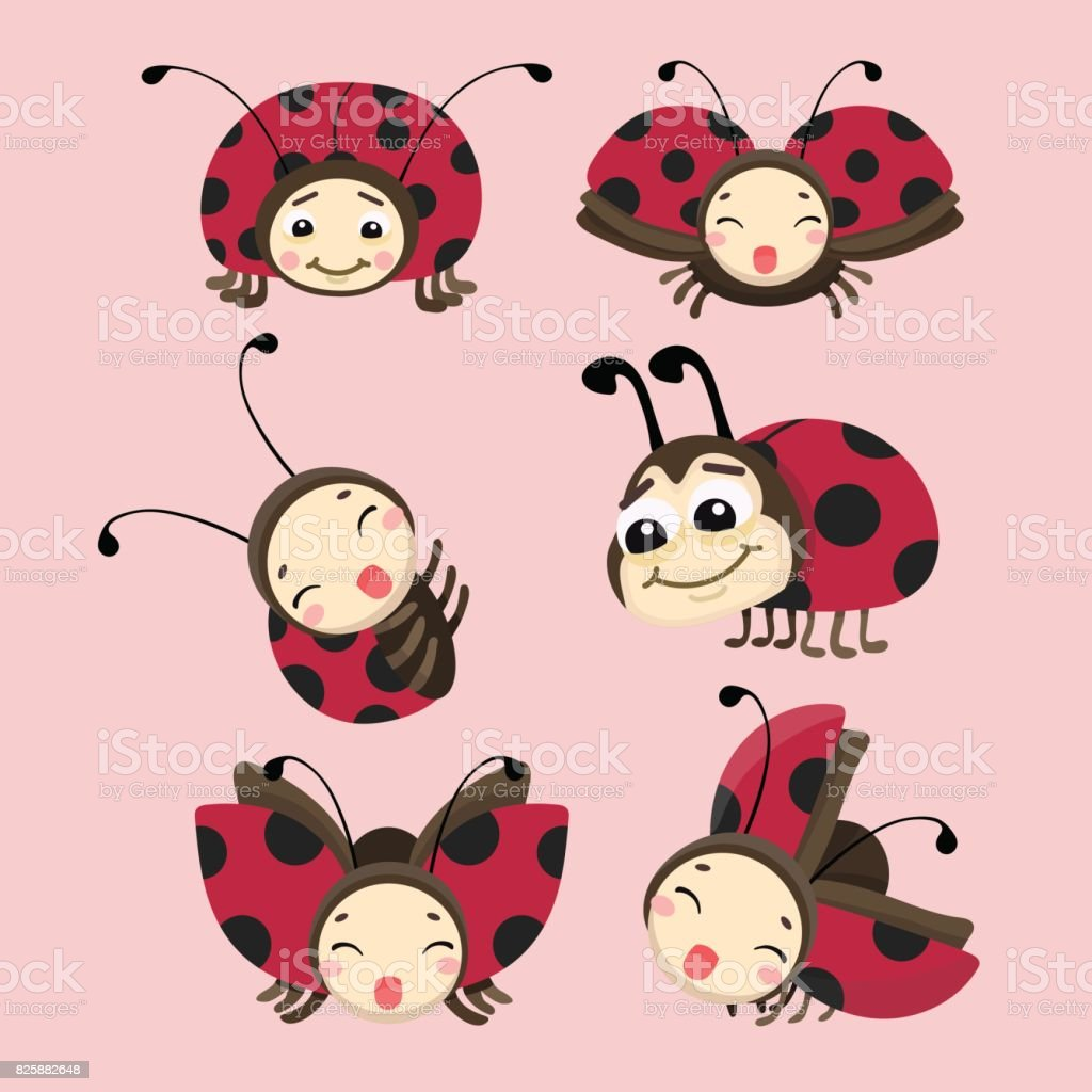 A Cartoon Ladybug cartoon ladybug vector set stock illustration - download