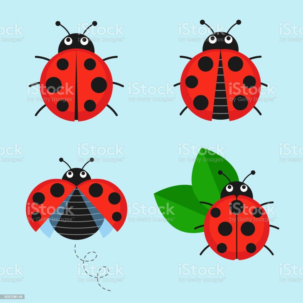 Cartoon ladybug vector set