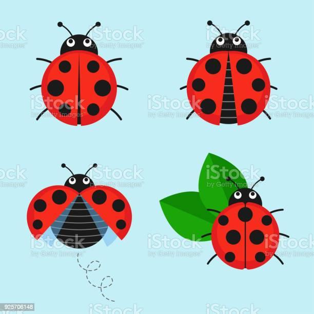 Cartoon ladybug vector set vector id925706148?b=1&k=6&m=925706148&s=612x612&h=xp ec3n8g9c7zcow lll3i2 3rmxvwrttttzhjv92bc=