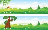 Vector cartoon illustration of beautiful summer landscapes.