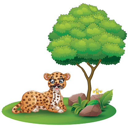 Cartoon leopard lay down under a tree on a white background
