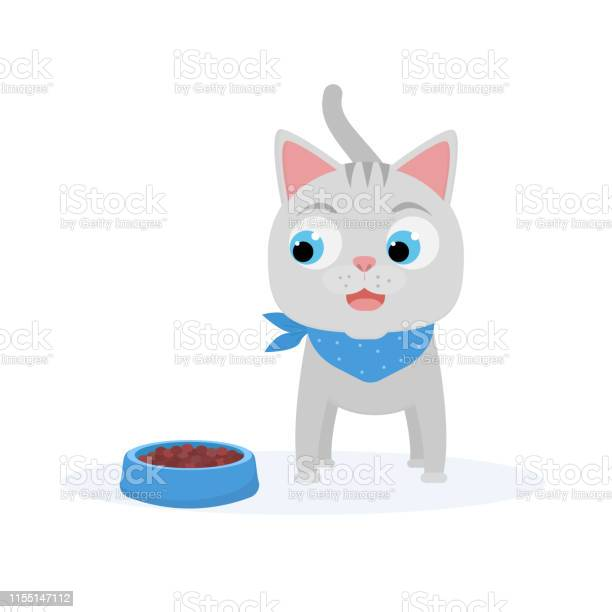 Cartoon little kitten with pet food in the bowl funny cat eating vector id1155147112?b=1&k=6&m=1155147112&s=612x612&h=pwyv3qoq2etcae jhkvxtvou uxpc0ndpct9q6o fn0=