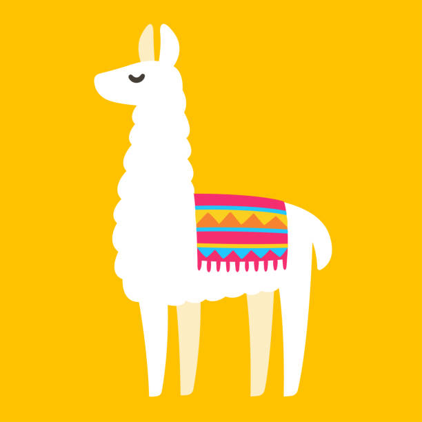 Best Llama Illustrations, Royalty-Free Vector Graphics