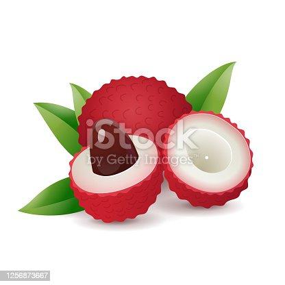 istock Cartoon lychee fruit 1256873667