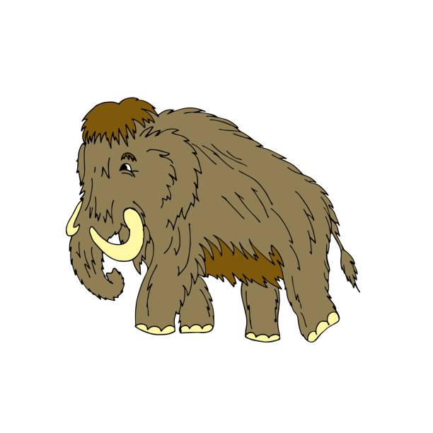 cartoon auf ice age mammut steht. vektor-illustration. isolat - eiszeit stock-grafiken, -clipart, -cartoons und -symbole