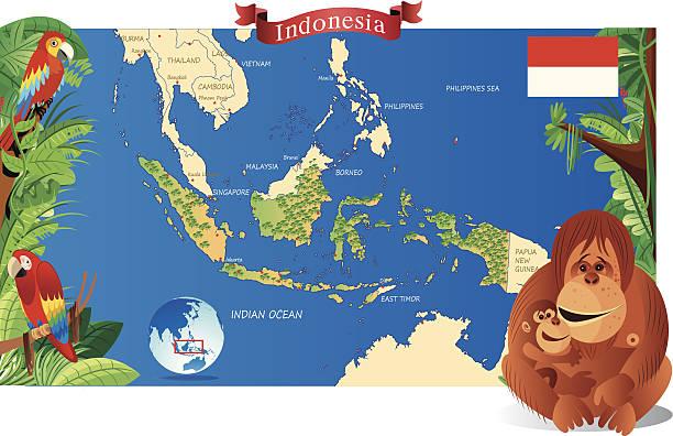 cartoon karte von indonesien - lombok stock-grafiken, -clipart, -cartoons und -symbole