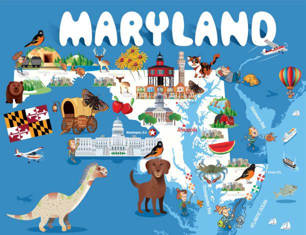 cartoon-karte von maryland - salisbury stock-grafiken, -clipart, -cartoons und -symbole