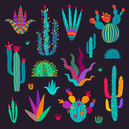 Cartoon mexican cactuses, colorful vector plants