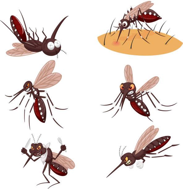 illustrazioni stock, clip art, cartoni animati e icone di tendenza di cartoon mosquito collection set - zanzare