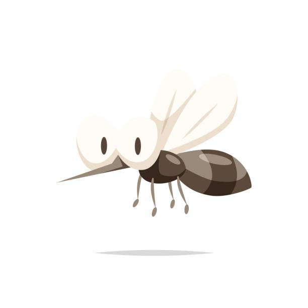 illustrazioni stock, clip art, cartoni animati e icone di tendenza di cartoon mosquito vector isolated - zanzare
