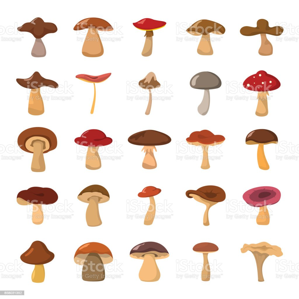 Cartoon mushrooms vector illustration set. vector art illustration