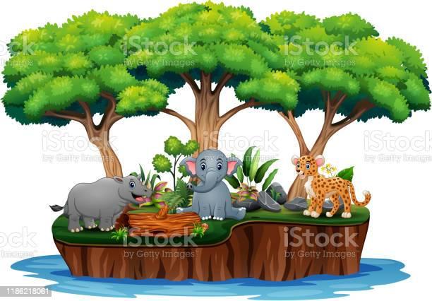 Cartoon nature island with wild animals vector id1186218061?b=1&k=6&m=1186218061&s=612x612&h=kvnaibr6hudx nqopxrylzbp8thp qmfqi44k6dbjqc=