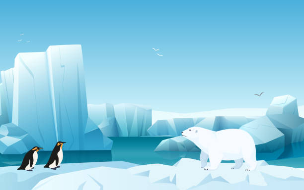 Iceberg Cartoon Adobe Illustrator - Cartoon Iceberg Png - Free Transparent  PNG Clipart Images Download