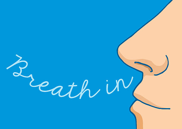 Cartoon nose breathing in word Cartoon illustration of nose breathing in a word inhaling stock illustrations