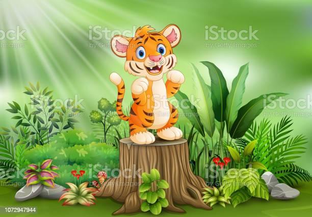 Cartoon of a tiger standing on tree stump with green plants vector id1072947944?b=1&k=6&m=1072947944&s=612x612&h=qmhkw2d9et2hxoakpvjob6arvrspxwxi3h8o1kxx4 k=