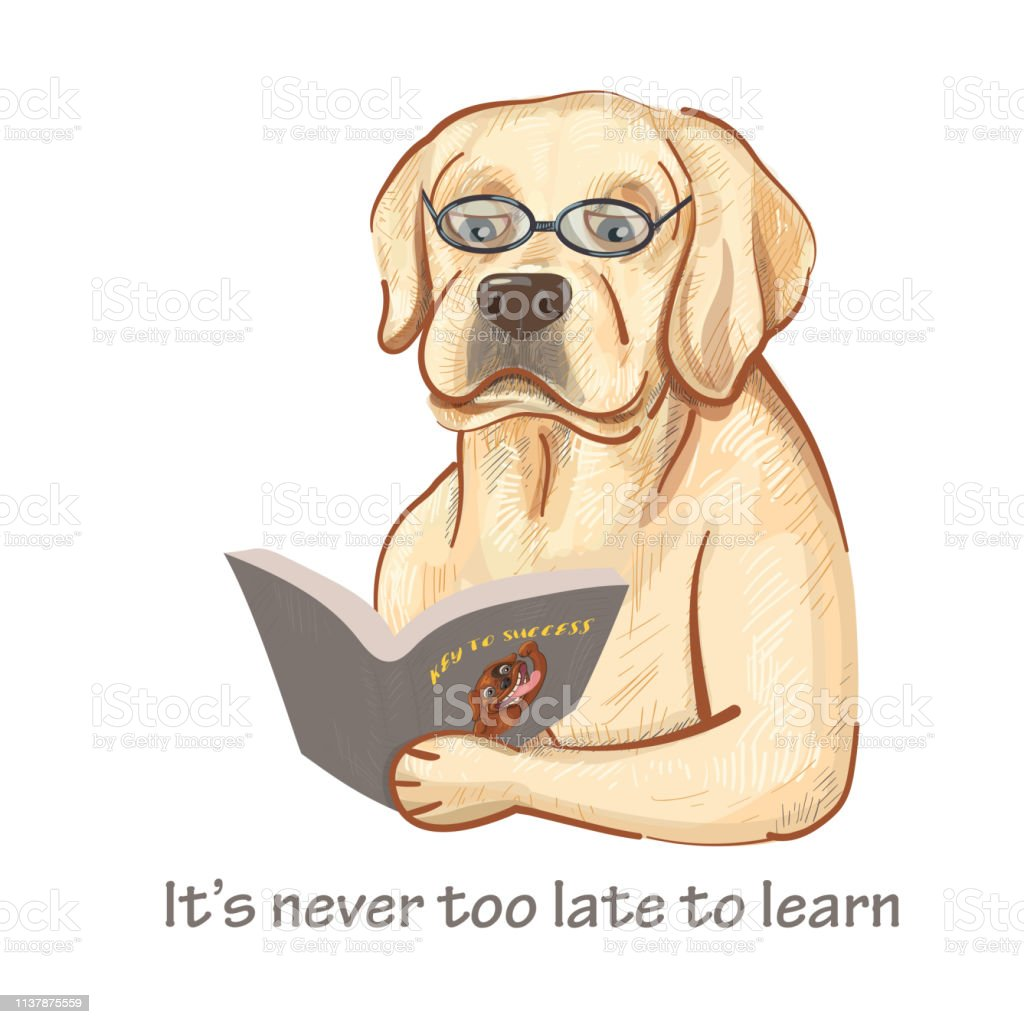 Ilustración De Dibujos Animados De Perro Labrador Que