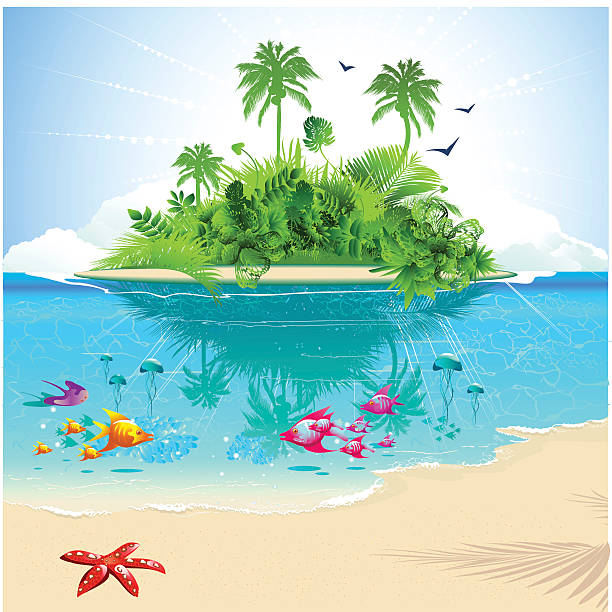 cartoon of ocean and island with tropical fish and greenery - wildlife travel stock illustrations, clip art, cartoons, & icons