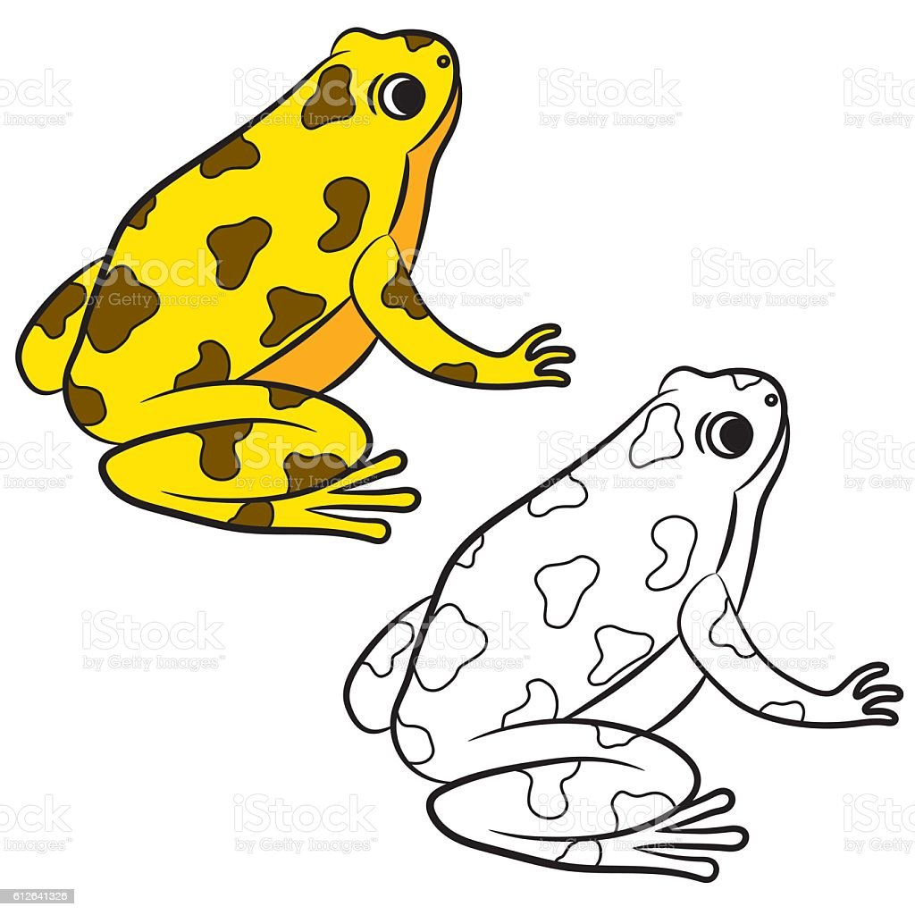 Cartoon Of Poisondart Frog Coloring Page Stock Vektor Art Und Mehr