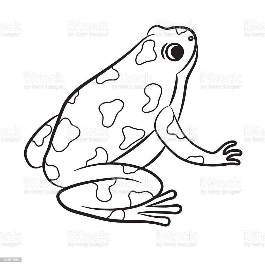 Cartoon Of Poisondart Frog Coloring Page Stock Vector Art & More ...