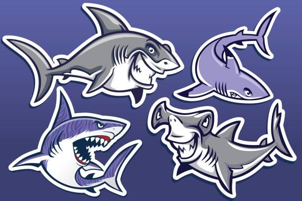 Nice Shark Cartoon