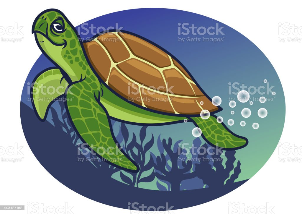 cartoon of turtle character vector art illustration