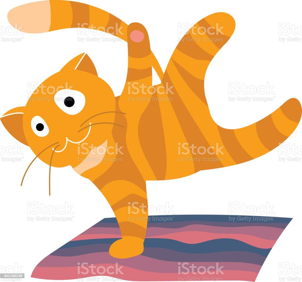 Cartoon orange tabby cat doing workout on a mat vector art illustration
