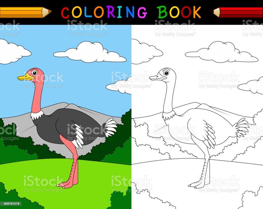 Coloriage Bebe Autruche.Livre De Coloriage Autruche Dessin Anime Vecteurs Libres De Droits