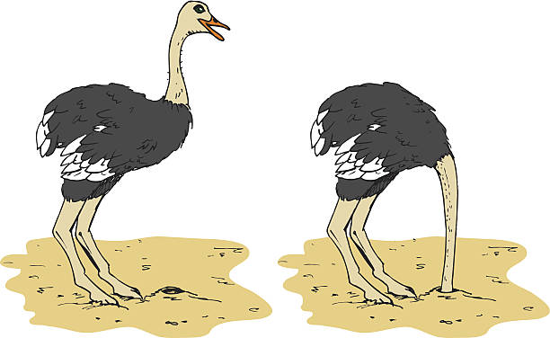 stockillustraties, clipart, cartoons en iconen met cartoon ostrich putting head in the sand - struisvogel