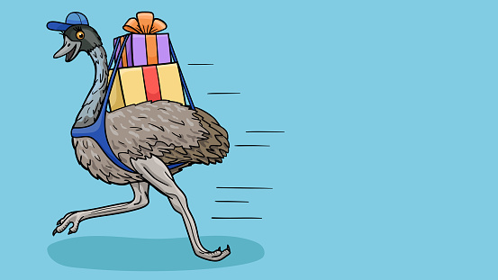 A cartoon ostrich runs with parcels to the address.