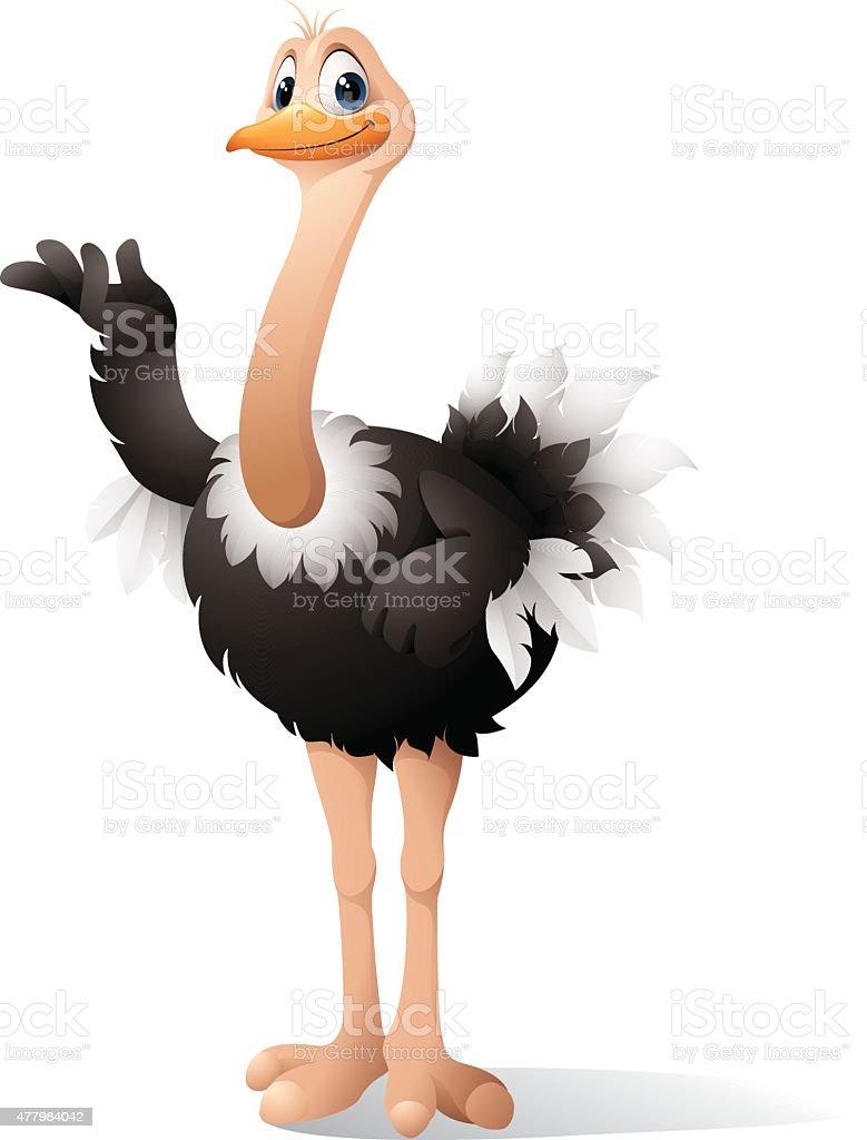 De avestruz dos - ilustração de arte em vetor