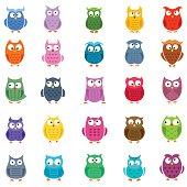 Cute vector owls set