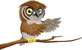 An illustration of a cartoon owl wearing glasses