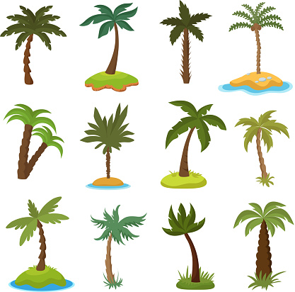 Cartoon palm trees on tropical exotic islands vector set