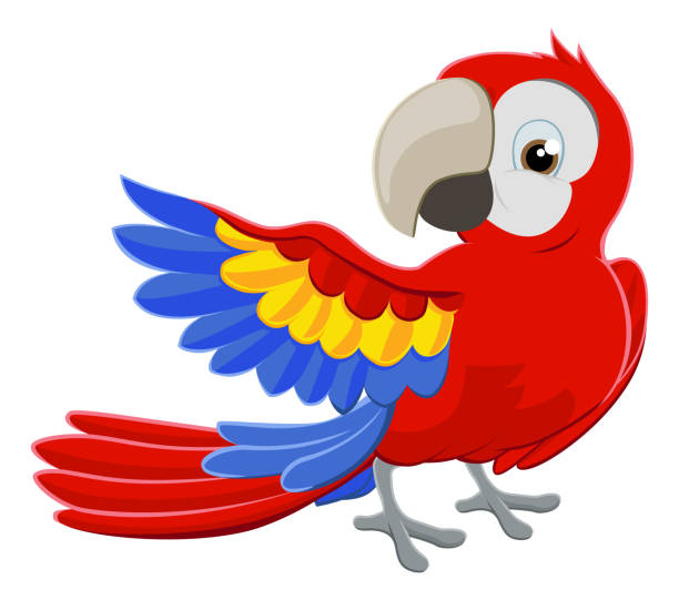 ilustrações de stock, clip art, desenhos animados e ícones de cartoon parrot character - arara