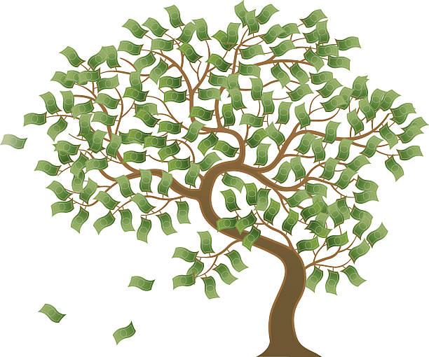 Cartoon photo of a tree growing money A money tree. money tree stock illustrations