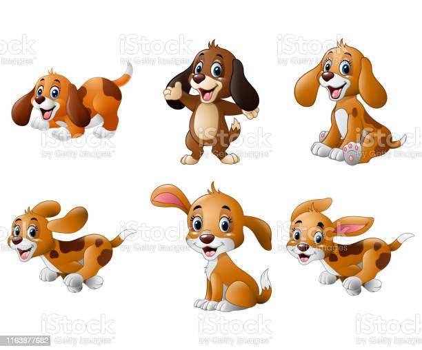 Cartoon playful puppy collections set vector id1163877682?b=1&k=6&m=1163877682&s=612x612&h=o614vvg0s0fcjp gp6 wnzqhxlu4jx1huqlpqktbkza=