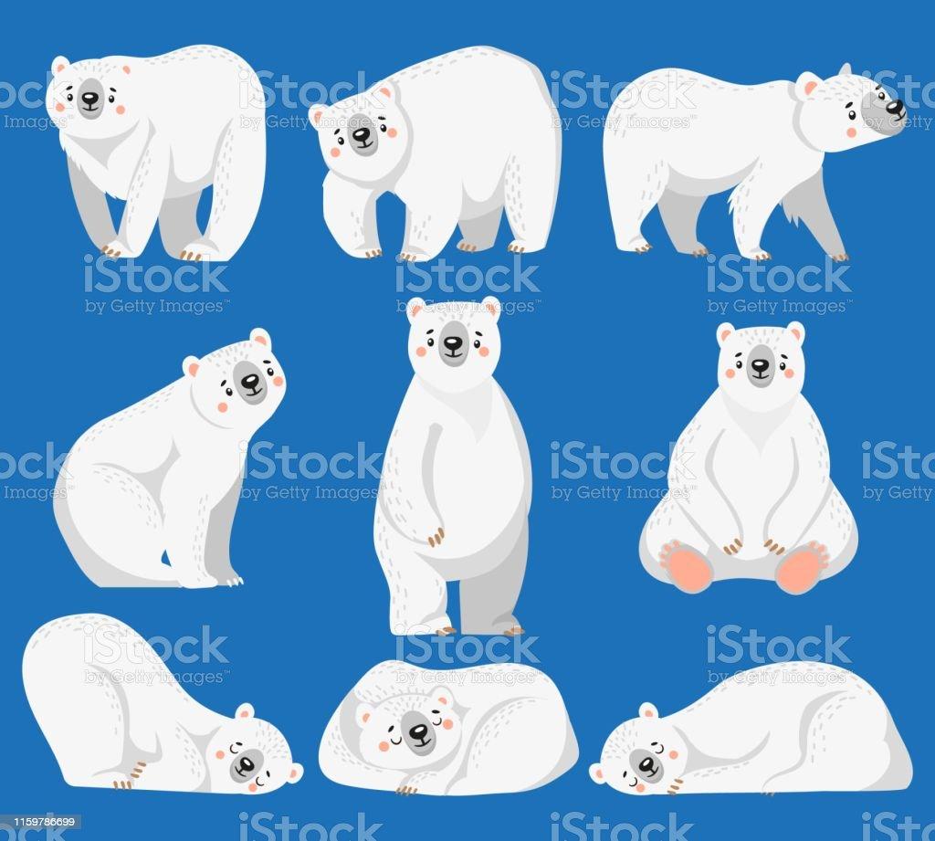 Vetores De Urso Polar Dos Desenhos Animados Ursos Brancos Animal Selvagem Artico E Urso Da Neve Ilustracao Isolada Do Vetor E Mais Imagens De Animal Istock