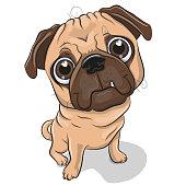 Cartoon Pug Dog isolated on a white background