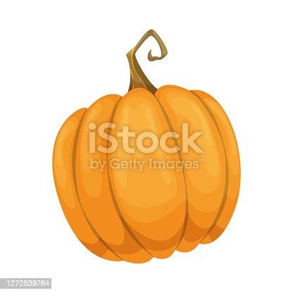Cartoon pumpkin icon. Orange and yellow autumn pumpkin. Large gourd vegetable. Farm harvest vegetable fresh and tasty.