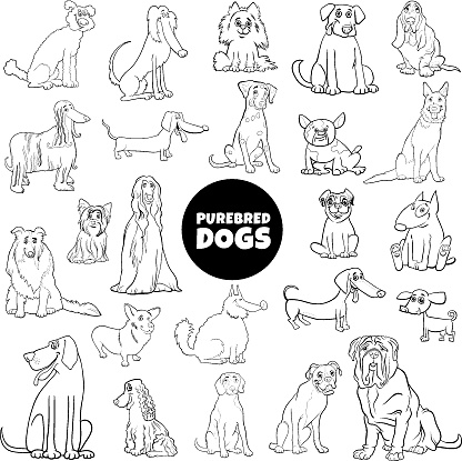 cartoon purebred dogs large set color book page