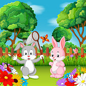vector illustration of Cartoon rabbit couples with butterfly