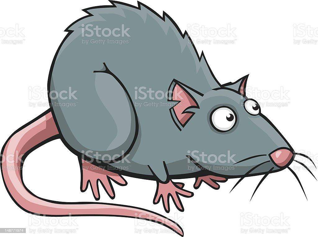 royalty free rat clip art vector images illustrations istock rh istockphoto com clip art retired clip art rat