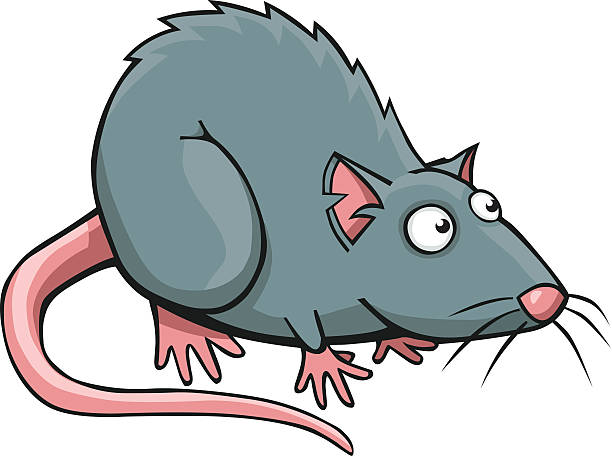 Royalty Free Brown Rat Clip Art, Vector Images ...