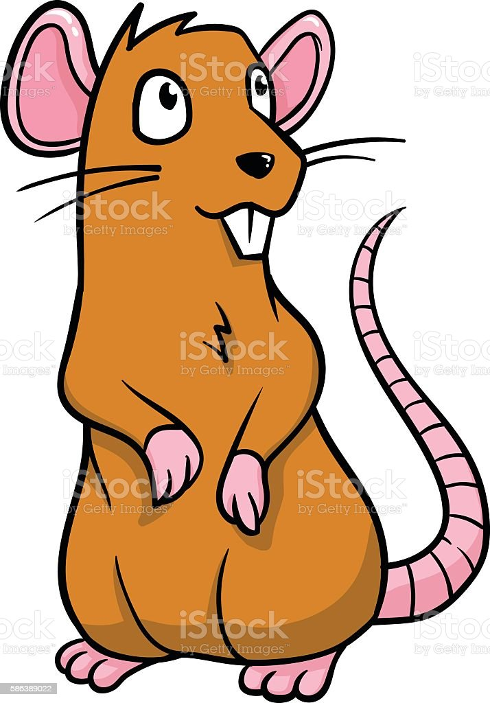 royalty free clipart rat pictures clip art vector images rh istockphoto com rat clipart free rat clip art black and white