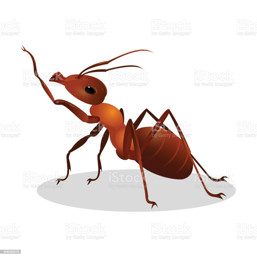 Cartoon realistic ant isolated on white. One leg raised up vector art illustration