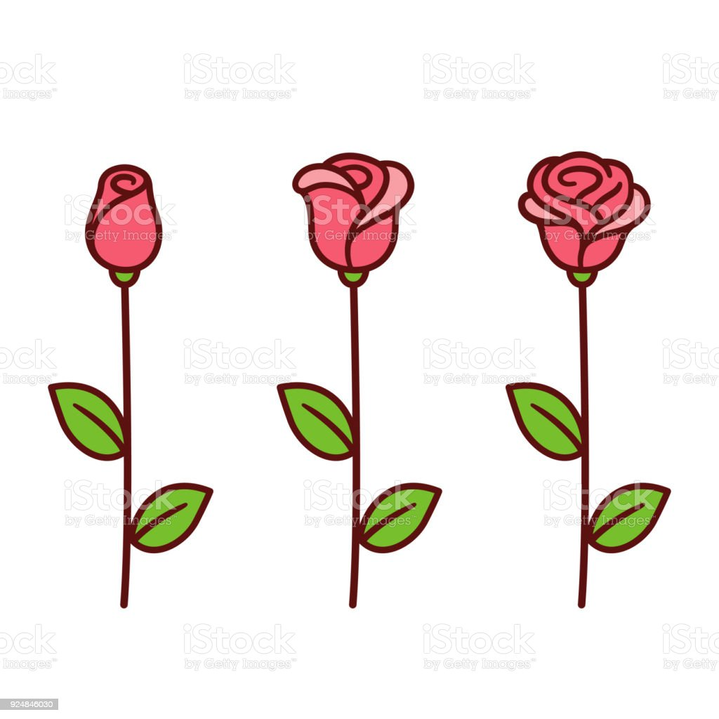 Cartoon rose set