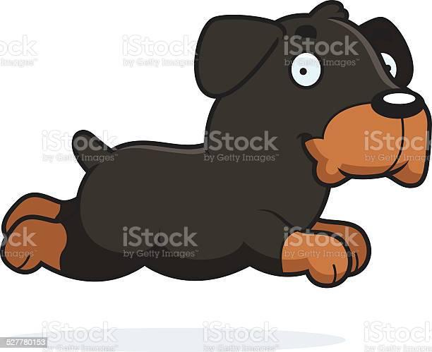 Cartoon rottweiler running vector id527780153?b=1&k=6&m=527780153&s=612x612&h=cxxthtd7j fjiriiawny1uyvgfhluh0jf1koeslyybq=