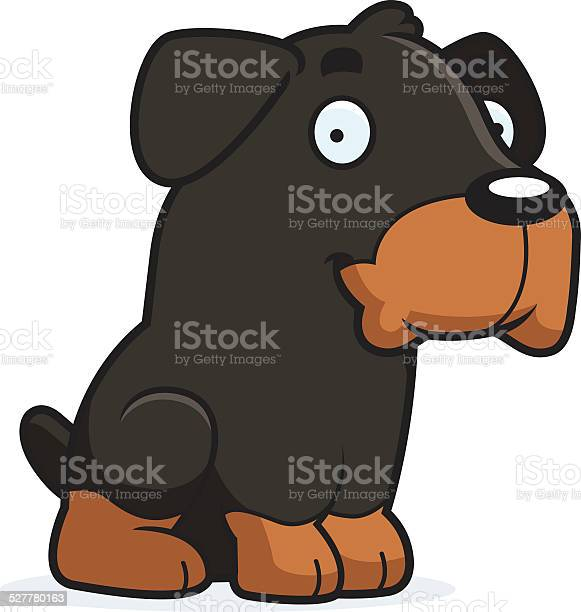 Cartoon rottweiler sitting vector id527780163?b=1&k=6&m=527780163&s=612x612&h=snk9lo  hkdla vnjdodxoffznguuksqmnhk5ibnibk=