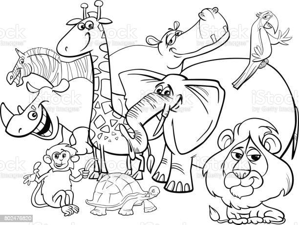 cartoon safari animals coloring page vector id